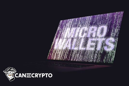 Crypto Micro wallets