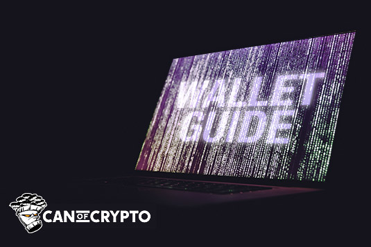 crypto wallet guide